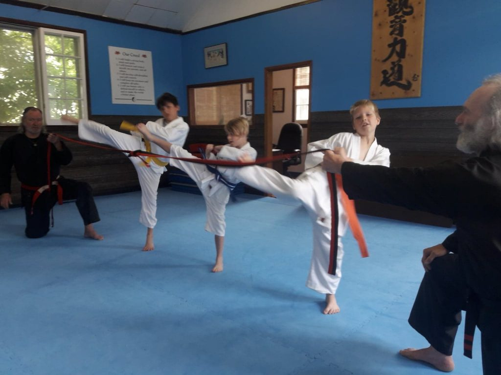 Port Perry Kids martial arts ipon kunite students kicking
