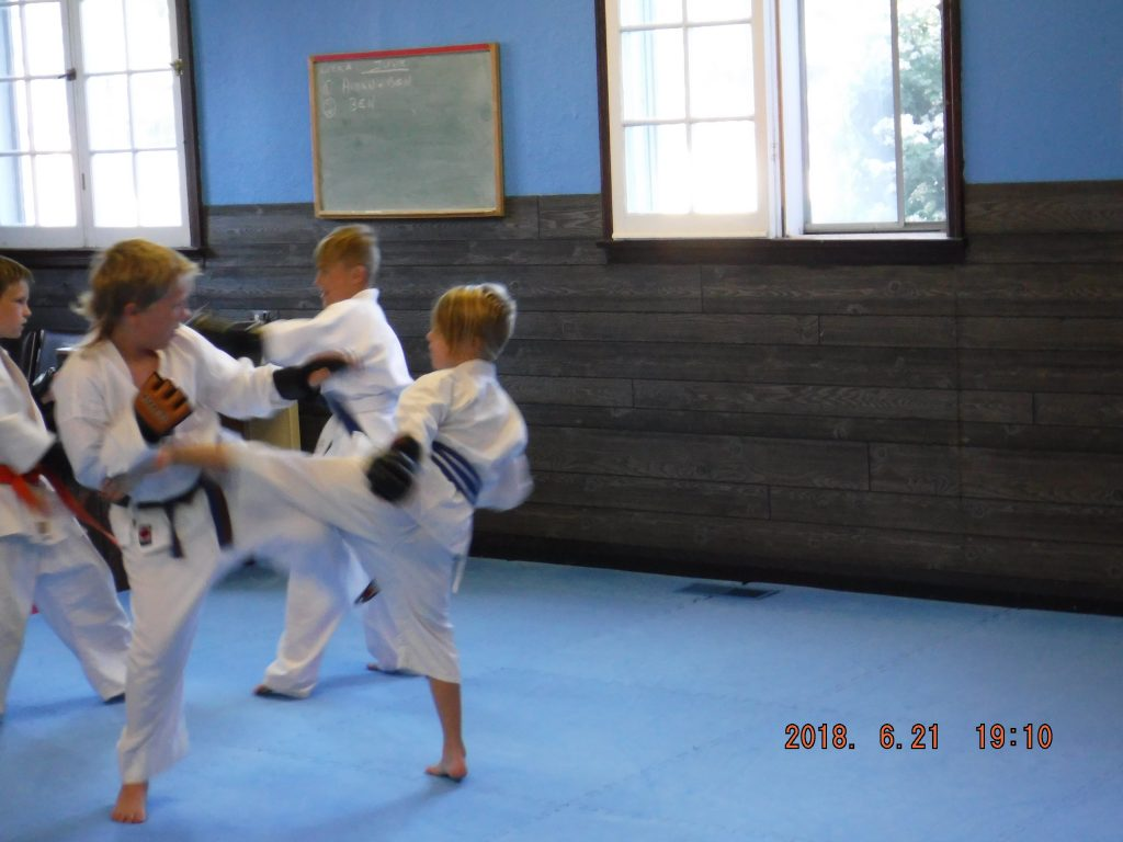 Port Perry Kids martial arts ipon kunite sparring